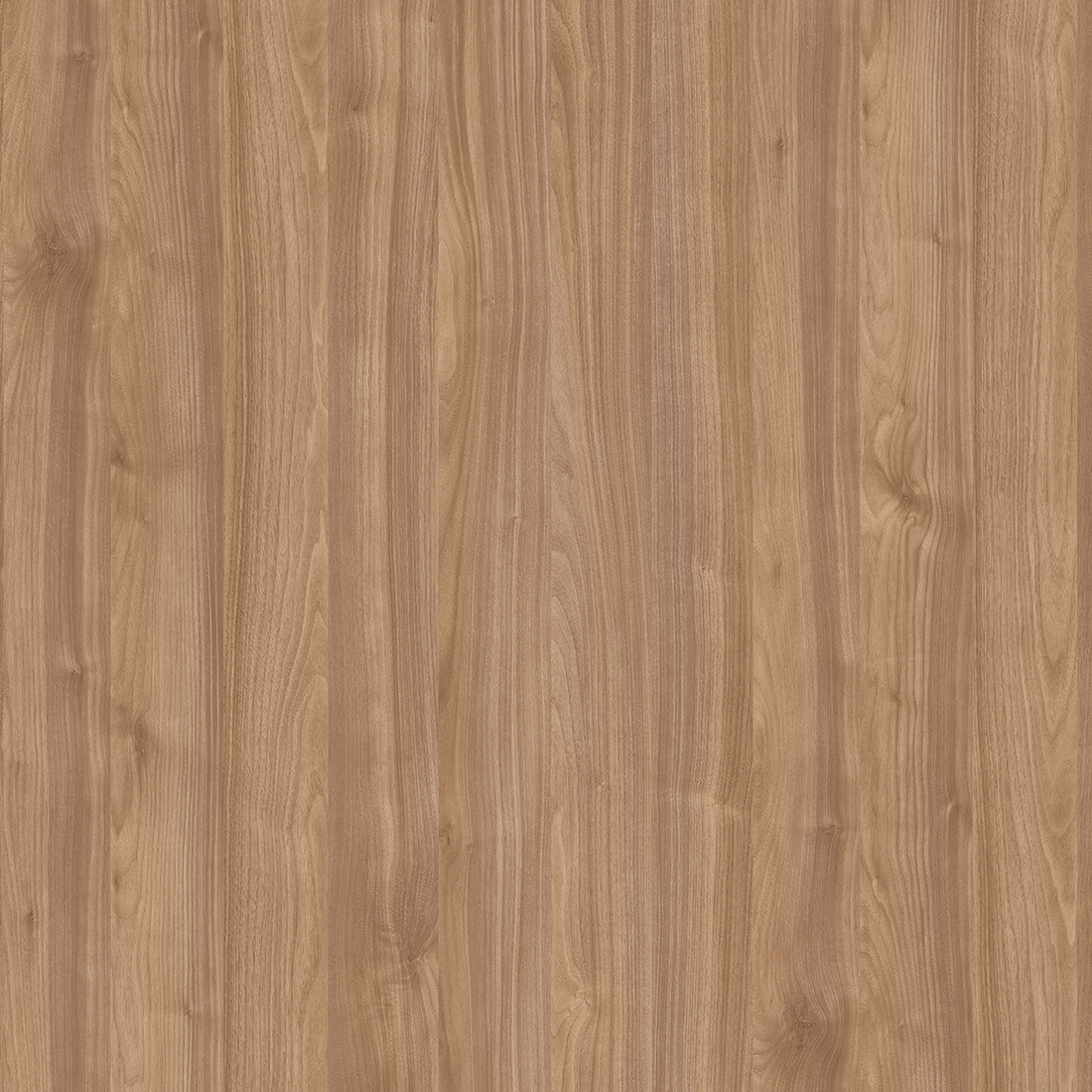 Light Select Walnut